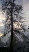 Vinarna Šumperk 14